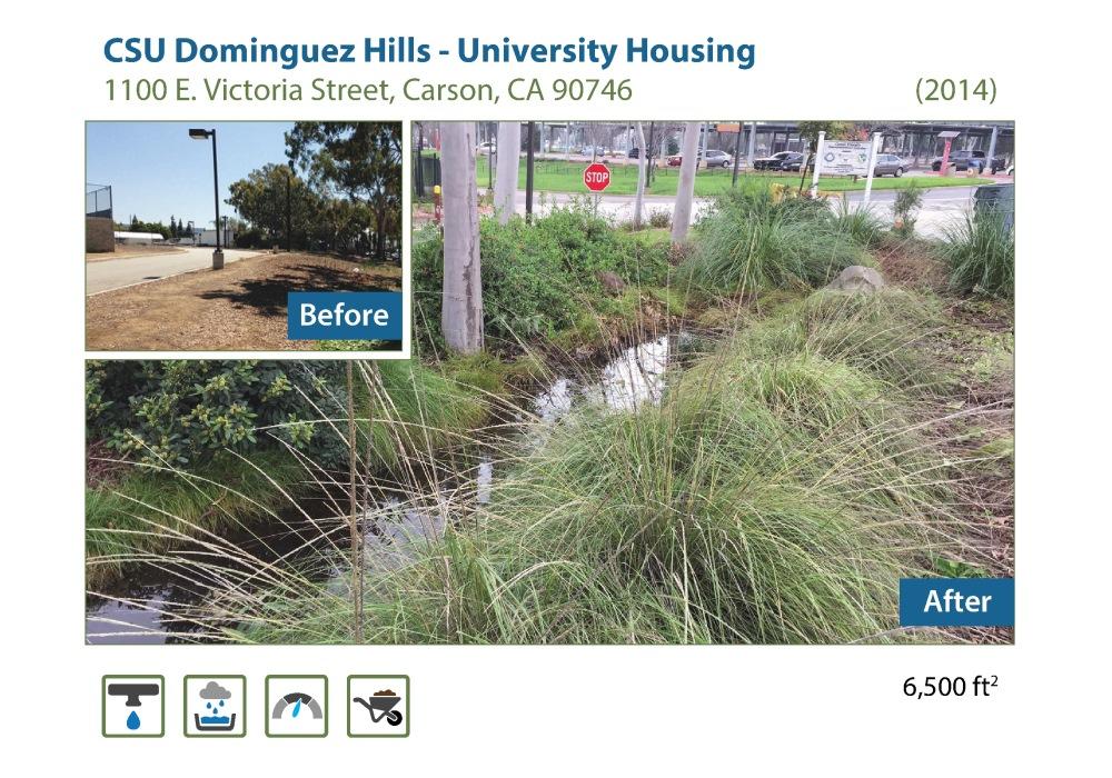 CSU Dominguez hills